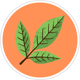 3-Green-Leaves.png