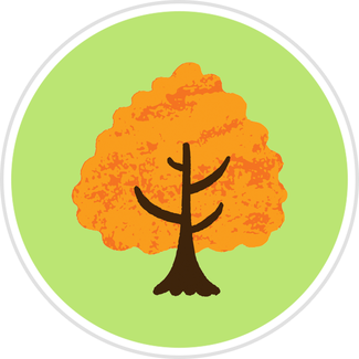 Orange-Tree.png