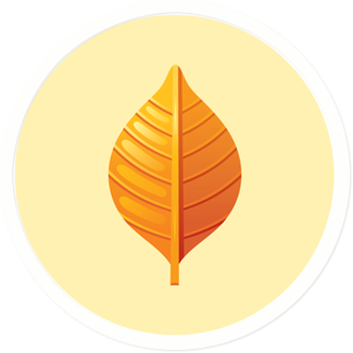 Orange-Leaf.png